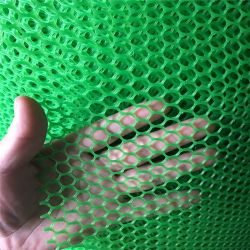 PPのPEはプラスチック網6mmの網の入り口突き出た