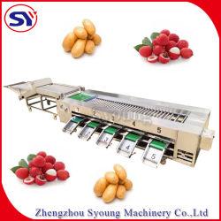 Rouleau de niveleuse Légumes Fruits&trieur de classement de la machine de tri par taille pour la tomate de pommes de terre