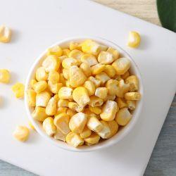 Granturco dolce liofilizzato alimento sano del Fd della frutta