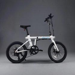 Vente à chaud de la Chine Vélo Pliant 20 pouces Cycle électrique pliant le plus léger