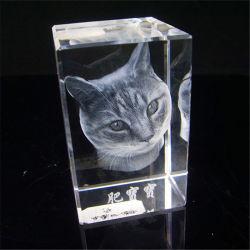 Laser superiore Engraving Crystal (CL-067) di Grade 3D