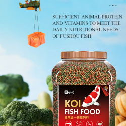 Yee Koi Fish Food Not Muddy water Special Fish Food Kleur verhogen Body Koi Fish Feed