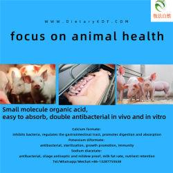 부가적인 Acidifier 동물성 성장 Porfermance는 급료 칼슘 Formate 첨가물을 공급한다