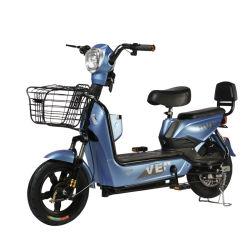 48V12A E vélo pour le sport de vélo de moteur de moyeu30km/h de la mobilité électrique Scooterspas pliable véloE-Bike