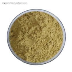 Venda por grosso de feijão verde de alta qualidade vietnamitas café com grãos Arábica Melhor Preço para importação de grãos de café cru de boa qualidade
