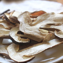 Séchés blancs tranchés sauvage Funghi Porcini Mushroom