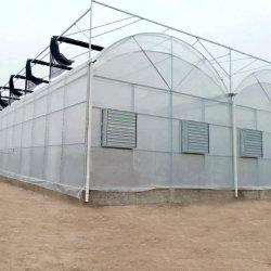 /Granja comercial agrícola/Jardín/span única película de Polipropileno/PO/película PE cubiertas vegetales de efecto invernadero de tomate y pepino y pimientos/fresa