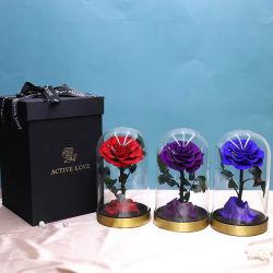 100% todos artesanais naturais preservadas Natural Rose flores na cúpula de vidro