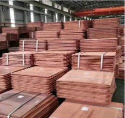 99,9 % cathode de cuivre électrolytique 99,99 % de cuivre sur le fil de mise au rebut les lingots d'aluminium les feuilles de cuivre cathode de cuivre fournisseur