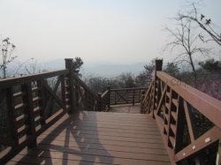 Valla de jardín de color natural puente de madera Handrial tubo cuadrado
