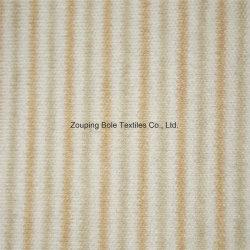 Coton naturel / Coton coloré / Coton vert