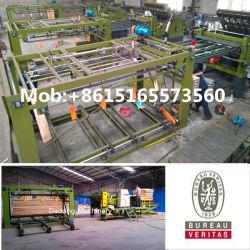 BV Pass Holzbearbeitung Sperrholz Maschine Kern Furnier Fügen Maschinen