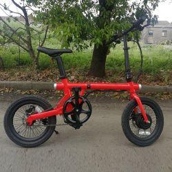 Rechargeable Batteryの7つの速度350W 20inch Electric Bike E Bike