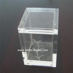 واضحة بلاستيكيّة أكريليكيّ [تا بغ] ورقيّة يعبّئ صندوق