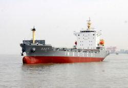 China Hochwertiges Container-Transportschiff