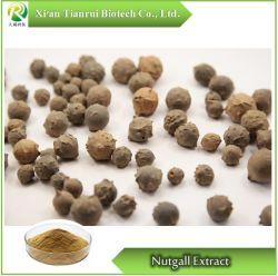 Nutgall/Chinese-Abschürfung/Gallnut/Galla-chinensis Auszug-Puder
