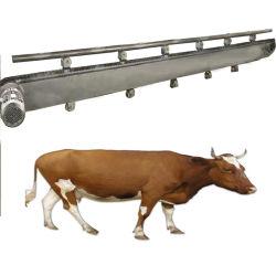Macellatrici per bovini macchina per la lavorazione della carne macchina per Abbattoir in vendita
