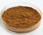 Estratto dei fogli del gelso del rifornimento per alimento funzionale