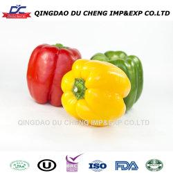 Poivre surgelés IQF, rouge / vert / jaune