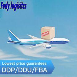 الشحن الجوي شاحنة الشحن المحيط فراشة نينغبو إلى دبي/تايلاند/فيتنام/إندونيسيا/الفلبين Express/الطيران/البحر وكلاء الشحن فريلايت فوردر دي بي