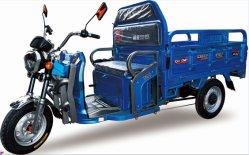 전동 세발자전거 사용 성인 사용을 위해 강한 모터 세발자전거 사용