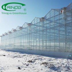Оцинкованные стальные трубы структуры стекла теплиц для продажи