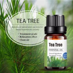 Cuidado de piel 10ml de aceite de Árbol de Té de grado Aromatheray OEM ODM pequeño MOQ en stock, el 100% natural Aceite Esencial.