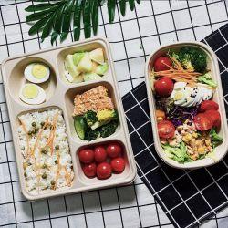 생분해성 콤포시 살라드 박스 친환경 종이 펄프 사탕수수 바카스 테이크어웨이 직사각형 음식 용기 벤토 포장 종이 점심 상자