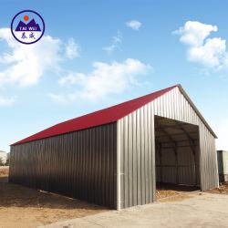 Structure en acier préfabriqués hangar de l'atelier (XTW-KA377)