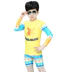 소년을%s 아이 Lycra 수영복 상단 그리고 간결 경솔한 가드