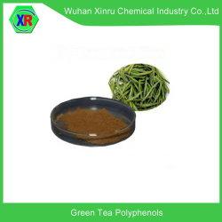 Natürliches grünes Teeblatt-Auszug-Puder mit Tee-Polyphenolen und EGCG