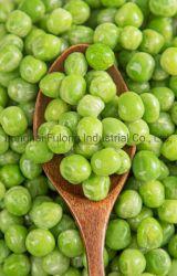 Alta qualidade de produtos hortícolas congelados IQF ervilhas sugar snap Kernel