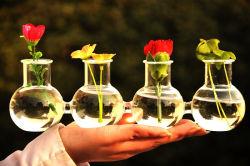 Groothandel Hydroponic Bloem Ambachten Glas samengevoegde Vaas voor decor Home Trouwkantoor