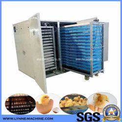كبير آليّة [ديجتل] أرض مستأجرة 50000 دجاجة بيضة محضن آلة الصين مصنع