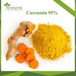 고품질 ISO는 제암성을%s 자연적인 심황 추출 심황 Curcumin95%를 증명했다