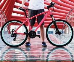 Le commerce en alliage d'assurance de vélo de montagne géant 21 Vitesse Mountainbike