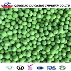 حبوب الفاصوليا المثلجة / حبوب IQF الخضراء مقطّعة / حبوب خضراء مجمدة