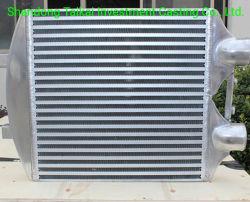 Los radiadores de calefacción parte de la pared de piezas de fundición de aluminio el aluminio