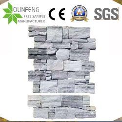 الصين طبيعيّة رماديّة يكدّر حجارة مرويت [لدجستون] قشرة