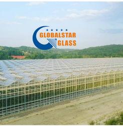 طباعة الزجاج/الزجاج المقسّى/شاشة الحرير بطول ٤ مم/٣ مم