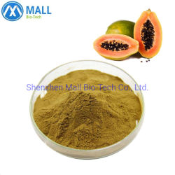 Organisch Papaya Poeder Pure Carica Papaya fruit Extract Poeder