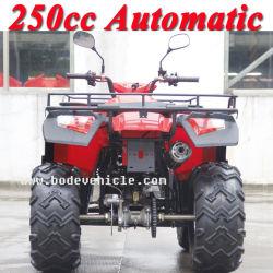 Nouveau 250cc Bode Quad Sports automatique ATV (MC-356)