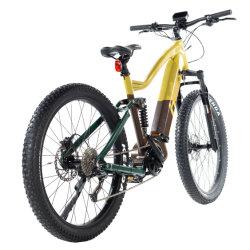 Продажа литиевой батареи с возможностью горячей замены 500 Вт / 750 Вт жира для взрослых в шинах горных велосипедов с электроприводом