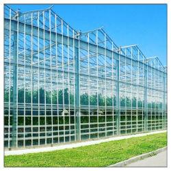고품질 Galvanized Steel Frame Commercial/Agriculture/Farm/Garden Ventilation Multi SPAN PC 비닐하우스 토마토 폴리카보네이트 비닐하우스 시트