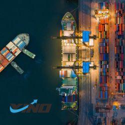 중국 해상 운송 중국 - 싱가포르/홀and/호주/영국/멕시코