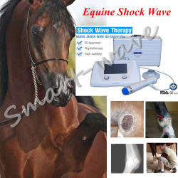 Het Been van de Splinter van de Therapie van de Drukgolf van de Behandeling BS-Swt2X van het Paard van de Schokgolf van de hoge Energie