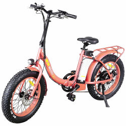20 Zoll Fat Tire Folding Electric Bicycle mit 36V 350 W Motor und Federgabel