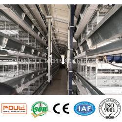 H schreiben Ei-Huhn-Rahmen-Batterie-Huhn-Korb für die Geflügel-Landwirtschaft