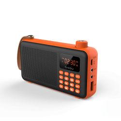 Shiduの小型サイズの多機能の携帯用Bluetoothエムピー・スリーのスピーカーサポートTFカード