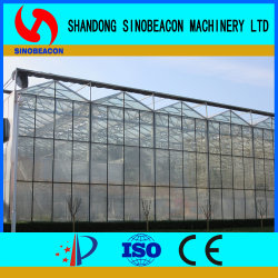 Gewächshaus-Glas Gewächshaus innerhalb des Kokosnuss-Stabes, der Gemüse pflanzt